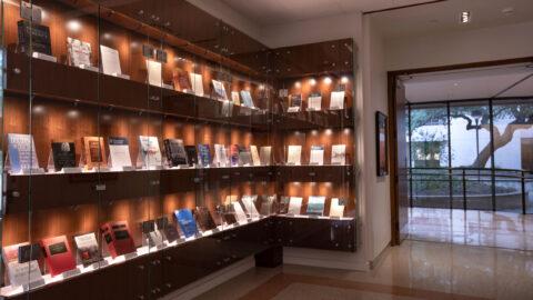 Bookshelves in spotlights