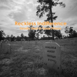 2015-HRC-USA-Reckless-Indifference-COVER
