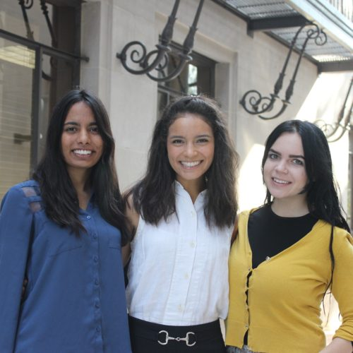​Undergraduate Interns (left to right) Sarah Qureshy, Gabby Torres, and Gabi Inhofe