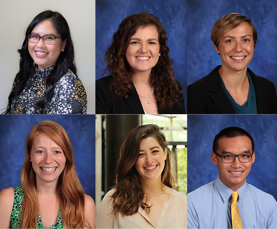 composite photo of postgraduate fellows