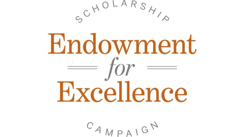 Endowment for Excellence