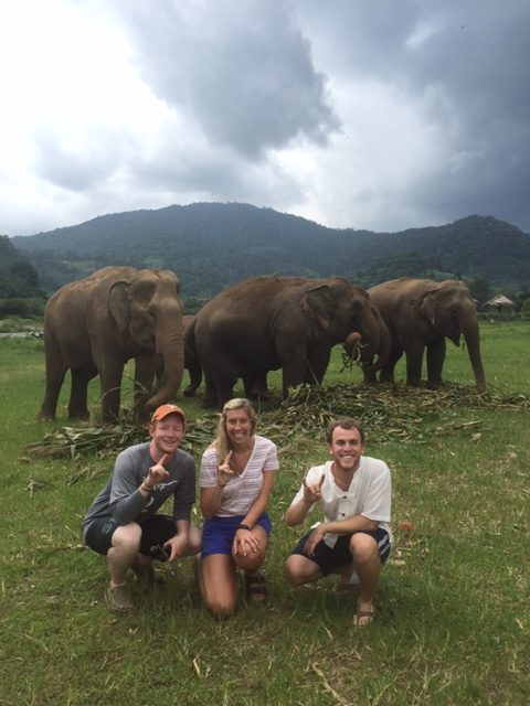 students in front of elephants